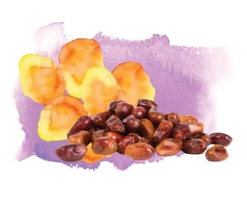 Date Palm Extract