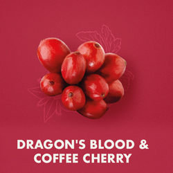 Dragon's Blood & Coffee Cherry